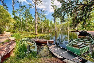 Row Boats In Cypress Tree Swamp I Art Print by Dan Carmichael