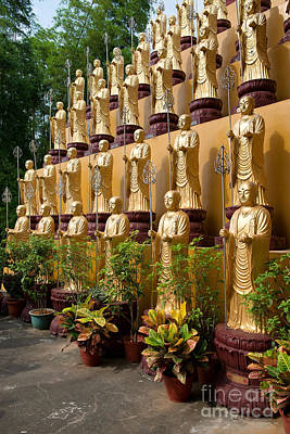 Photograph - Row Of Buddha Statues by Yew Kwang
