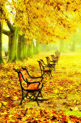 Fall Foliage Photograph - Row Of Red Benches In The Park by Jaroslaw Grudzinski