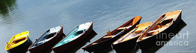 Photograph - Rowboats On Buffalo Ny Delaware Park Hoyt Lake Oil Painting Effect by Rose Santuci-Sofranko
