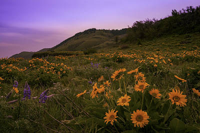 Photograph - Rowena Plateau by Jean-Jacques Thebault