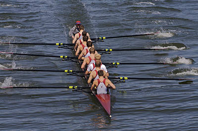 Photograph - Rowers by SC Heffner