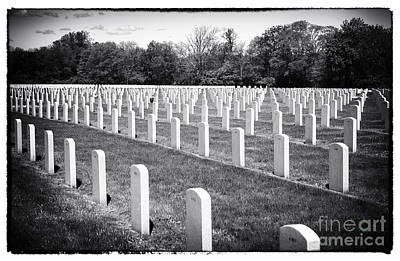 Photograph - Rows Of The Fallen by John Rizzuto