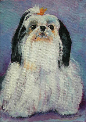 Painting - Roxy The Shih Tzu by Carol Jo Smidt