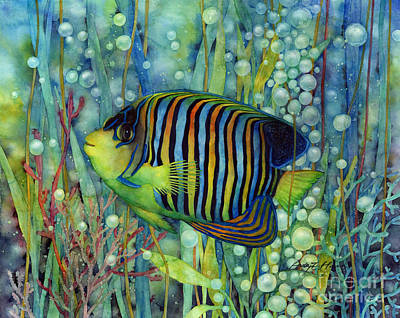 Colorful Tropical Fish Painting - Royal Angelfish by Hailey E Herrera