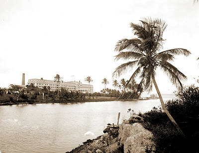 Miami Drawing - Royal Palm Hotel From Miami River, Hotels, Resorts, Rivers by Litz Collection