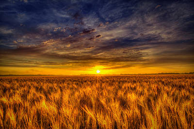 Wheat Field Sky Photograph - Royal Purple Sunrise by  Caleb McGinn