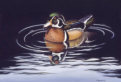 Wood Duck Painting - Royal Reflections by Richard De Wolfe