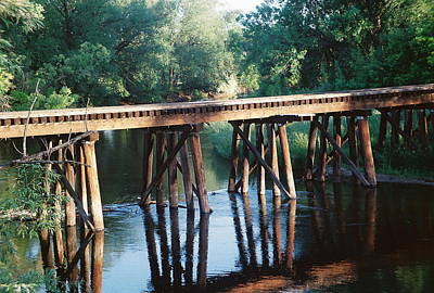 Photograph - Rr Tressel 2 by Trent Mallett