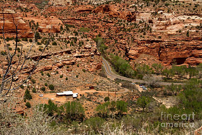 Photograph - Rt. 12 Utah by Butch Lombardi