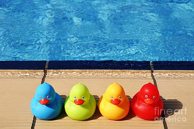 Rubberduck Photograph - Rubber Ducks by Luis Alvarenga
