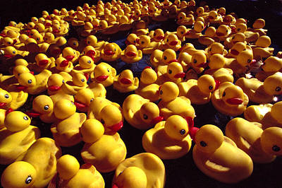 Photograph - Rubber Ducks by Michael Moschogianis