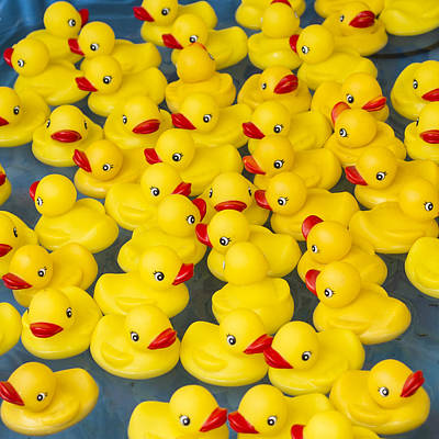 Photograph - Rubber Ducks - Really Plastic by Michael Flood