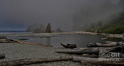Photograph - Ruby Beach 1 by Ansel Price