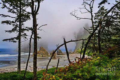 Photograph - Ruby Beach 2 by Ansel Price