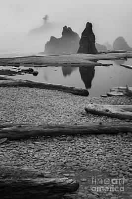 Photograph - Ruby Beach 3 by Sonya Lang