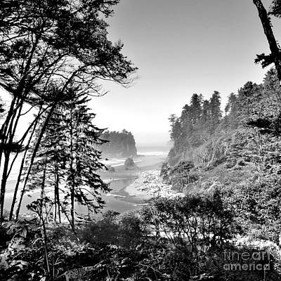 Photograph - Ruby Beach by Ansel Price