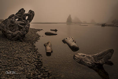 Ruby Beach Fog Art Print by Charlie Duncan