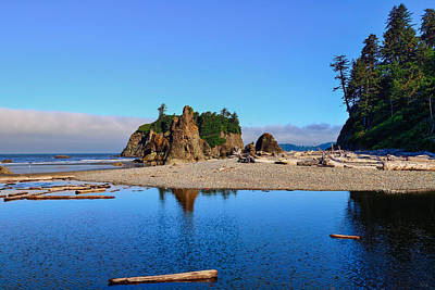 Photograph - Ruby Beach by Greg Norrell