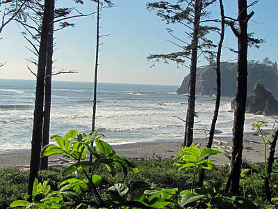 Photograph - Ruby Beach I by Tikvah's Hope
