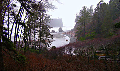 Photograph - Ruby Beach In The Winter by Jeanette C Landstrom