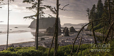 Photograph - Ruby Beach by Jason Kolenda