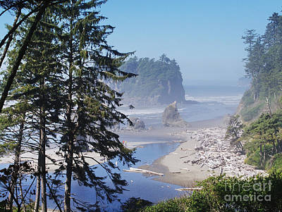 Photograph - Ruby Beach Morning by Ansel Price