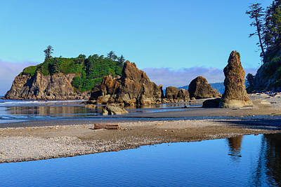 Photograph - Ruby Beach Seastacks by Greg Norrell