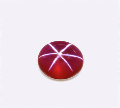 Cabochon Photograph - Ruby Corundum Cabochon by Dorling Kindersley/uig
