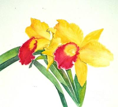 Painting - Ruby Kissed Orchids by Sandra Neumann Wilderman