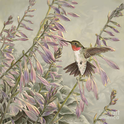 Wall Art - Drawing - Ruby-throated Hummingbird by Laurie Musser