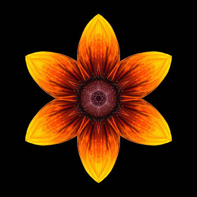 Photograph - Rudbeckia I Flower Mandala by David J Bookbinder