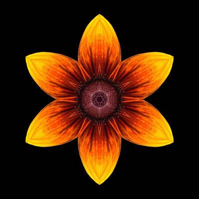 Rudbeckia I Flower Mandala Art Print by David J Bookbinder