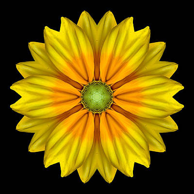 Photograph - Rudbeckia Prairie Sun I Flower Mandala by David J Bookbinder