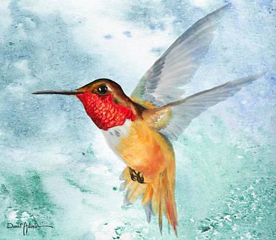 Da199 Rufous Humming Bird By Daniel Adams Art Print
