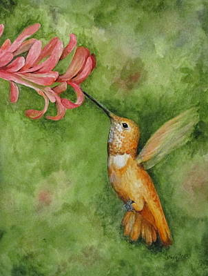 Painting - Rufous Hummingbird by Catherine Howley