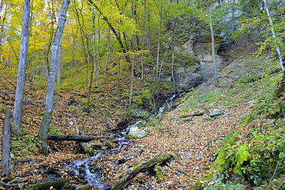 Photograph - Rugged Beauty by Bonfire Photography