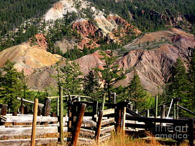 Art Print featuring the photograph Rugged Beauty by Kathy Bassett