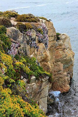 Of Big Sur Beach Photograph - Rugged Cliff And Flowers As Cliff by Tom Norring