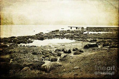 Photograph - Rugged Coast by Randi Grace Nilsberg
