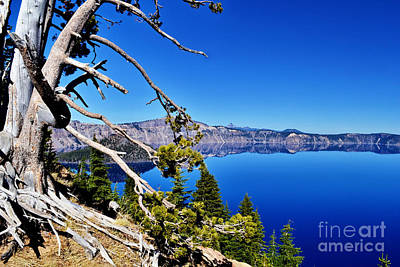 Photograph - Rugged Serene Scene by Ansel Price