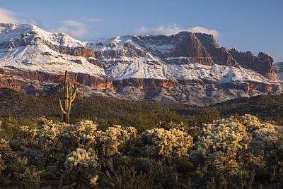 Photograph - Rugged Snow Covered Desert Mountains by Dave Dilli