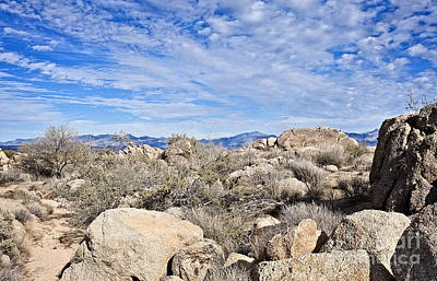 Photograph - Rugged Sonoran Rocky Top by Lee Craig