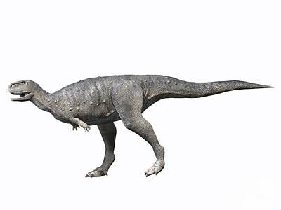 Rugops Primus, Late Cretaceous Of Niger Print by Nobumichi Tamara