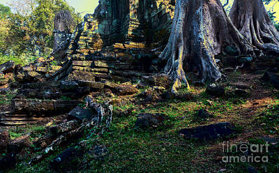 Tree Roots Photograph - Ruins And Roots by Julian Cook
