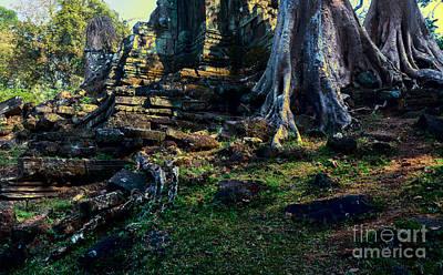 Ruins And Roots Art Print