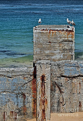 Photograph - Ruins At Monterey Bay by Susan Wiedmann