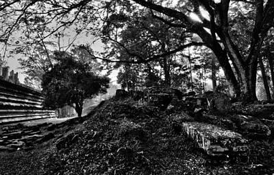 Photograph - Ruins by Julian Cook