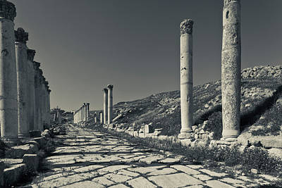 Roman Ruins Photograph - Ruins Of Roman-era Columns by Panoramic Images