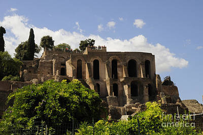 Photograph - Ruins Of The Palatine Hill by Brenda Kean